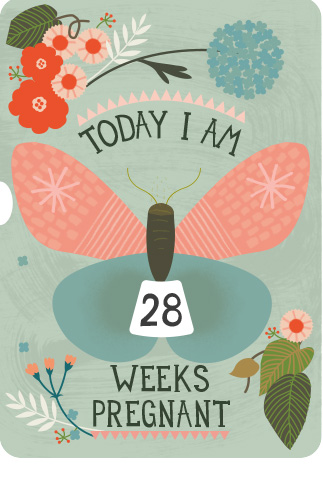 Milestone Turn Wheel Photo Card - Pregnancy in Weeks